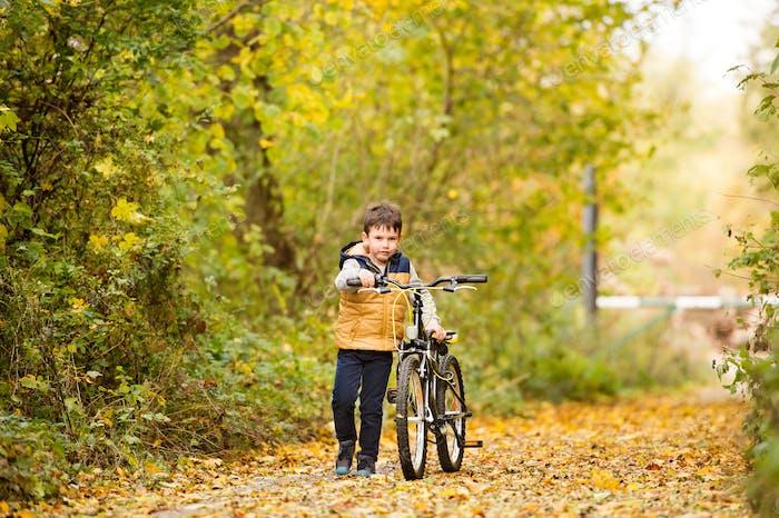 Cute little boy cycling in sunny autumn park.