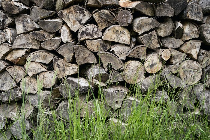 A neatly stacked pile of logs, a firewood log store.