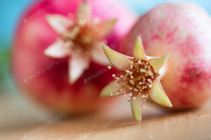 Macro photo of pomegranate fruit with focus on pestles and stamens