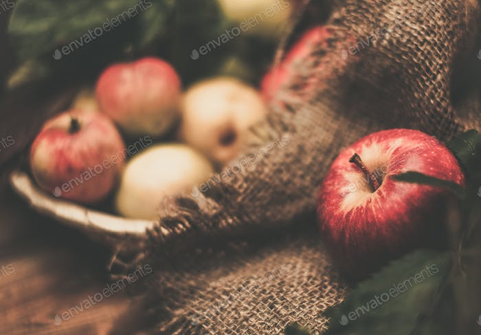 Apples on a sack clothes