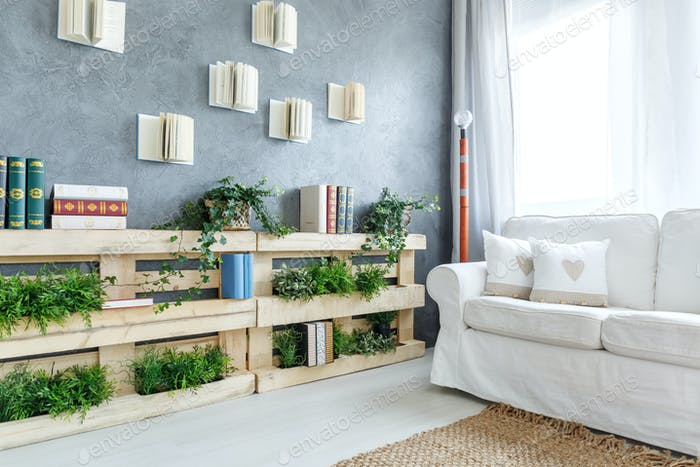 Plants on the bookshelf