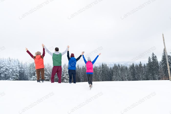 Friends On Mountain Top Winter Snow Forest, Young People Group Cheerful Raised Hands