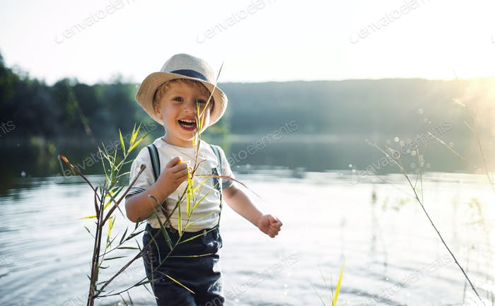 A small toddler boy standing by a lake at sunset. Copy space.