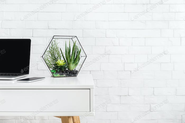 Desk with laptop and house plants at white brick wall background