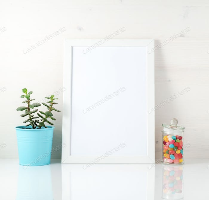 White frame, succulent, candy on white table