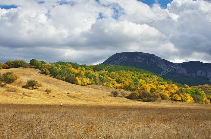 Autumn mountain landscape.