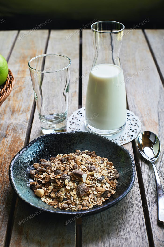 Oat cereal with fresh milk and green apples