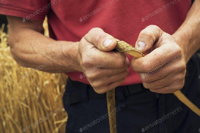 Close up of a thatcher holding a hazel wood spar.
