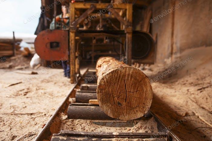 Log on woodworking machine, nobody, sawmill