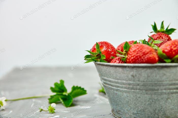 Erdbeeren in grauer Schüssel. Frische Erdbeeren. Wunderschöne Erdbeeren.