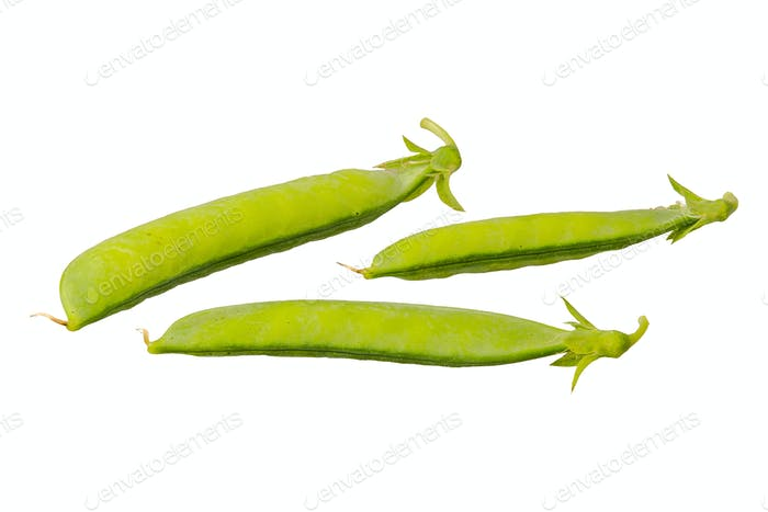 Green pea (Pisum sativum) on a white background