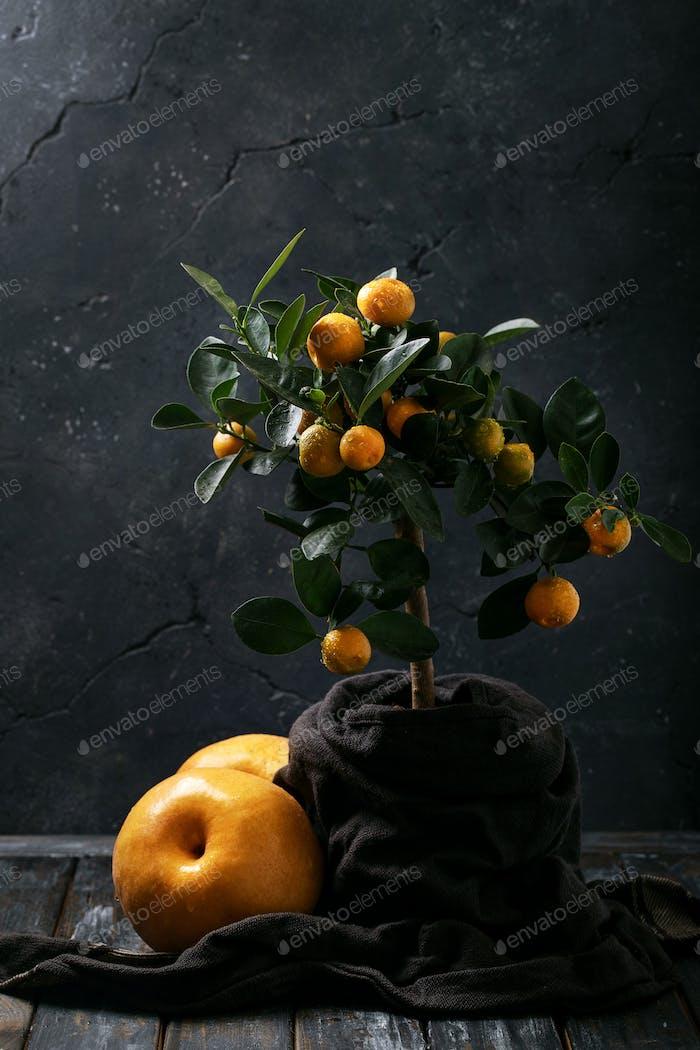 Orangensaft serviert mit Orangen
