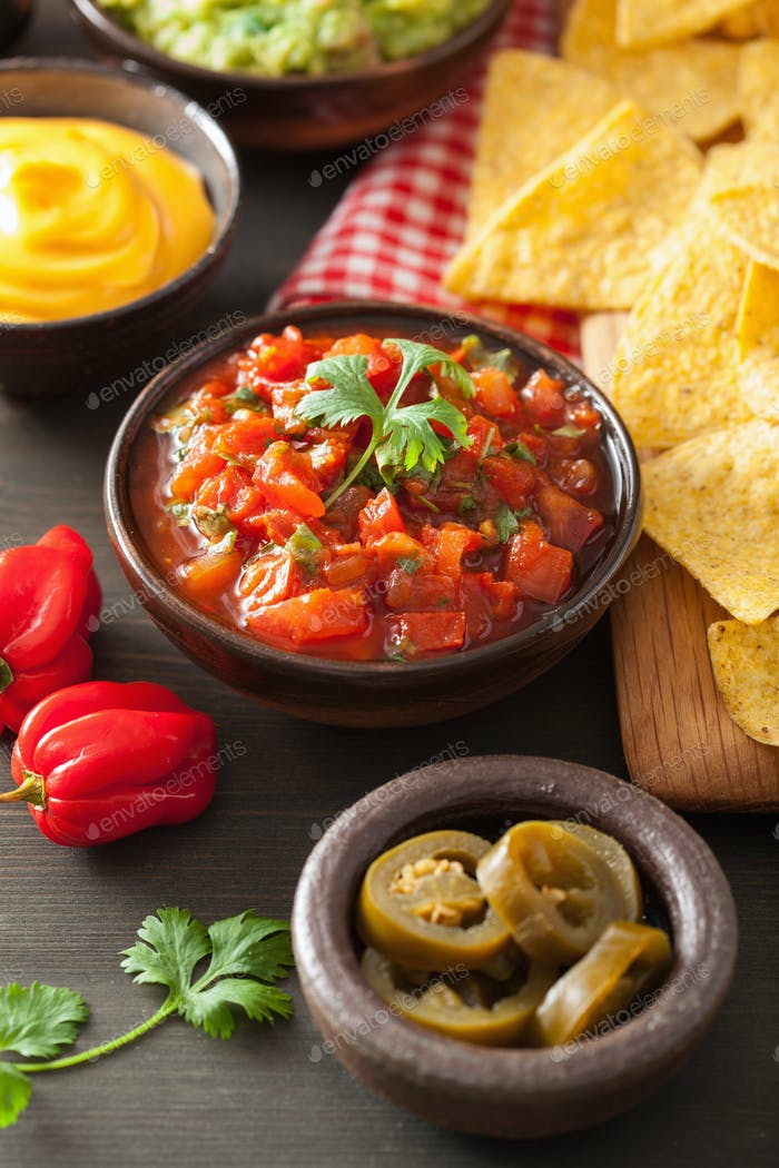 mexican nachos with guacamole, salsa and cheese dip