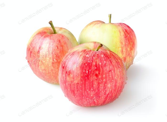 Три спелых яблока изолированы