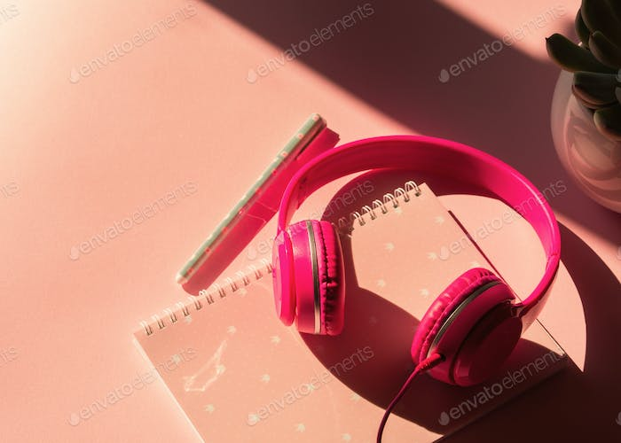 Headphones, notebook and succulent on pink