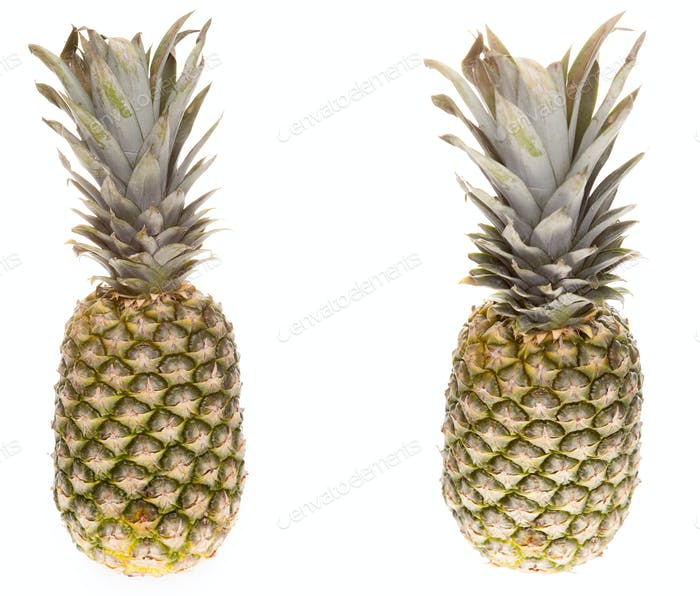 Pineapple on white background in studio isolated