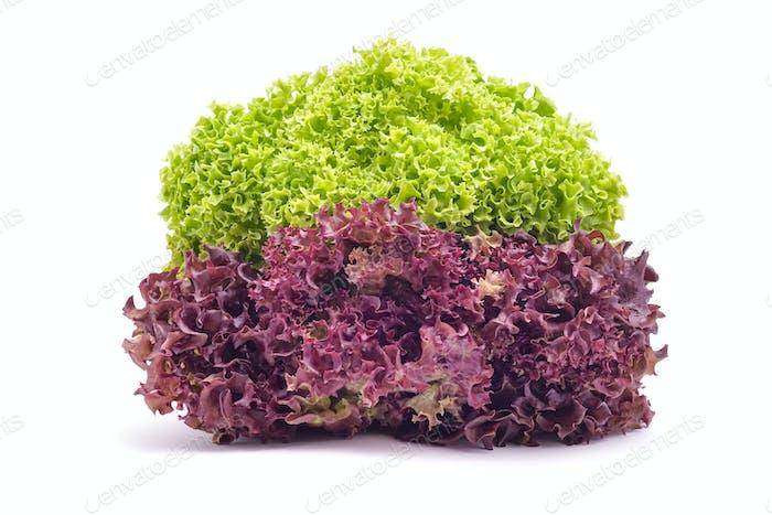 salad head mix