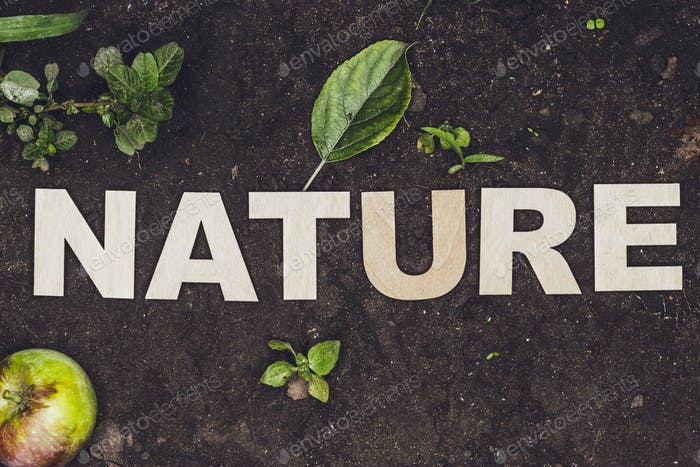 Word Nature Made Up With Wooden Letters