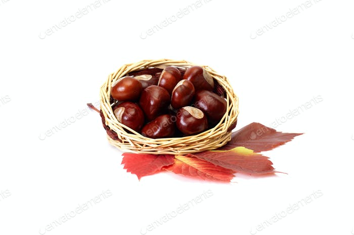 Autumn picture of leaves and chestnuts.