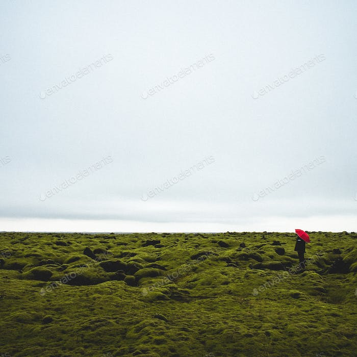 Man standing on green moss field with red umbrella