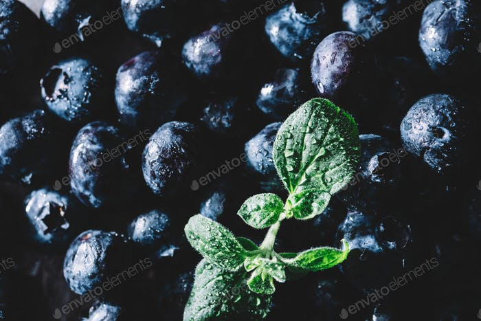 Pile of fresh juicy blueberry fruits and a wet green leaf