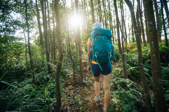 Woman hiker in sunrise tropical rainforest