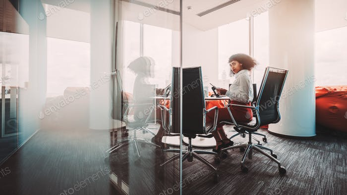 Woman entrepreneur in a boardroom