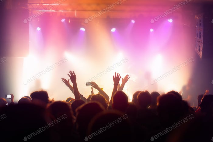 Music concert crowd, people enjoying live rock performance
