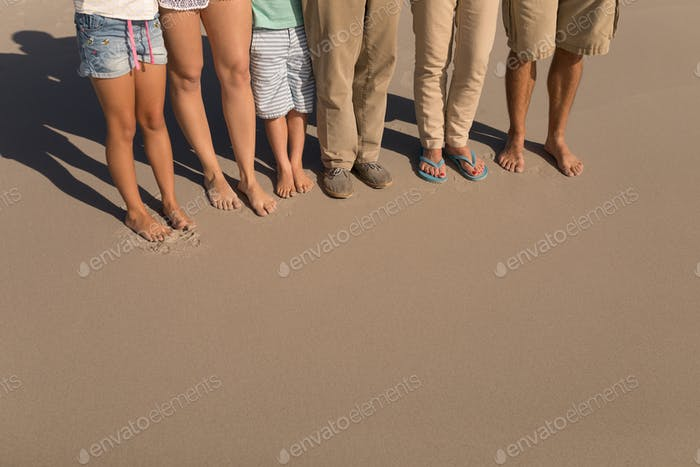 Low section of multi-generation family standing on beach in the sunshine