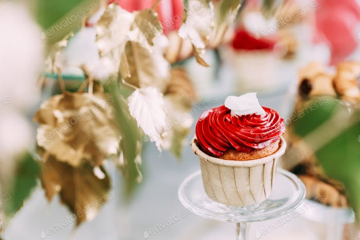 Dessert Sweet Tasty Cupcake In Candy Bar On Table. Delicious Swe
