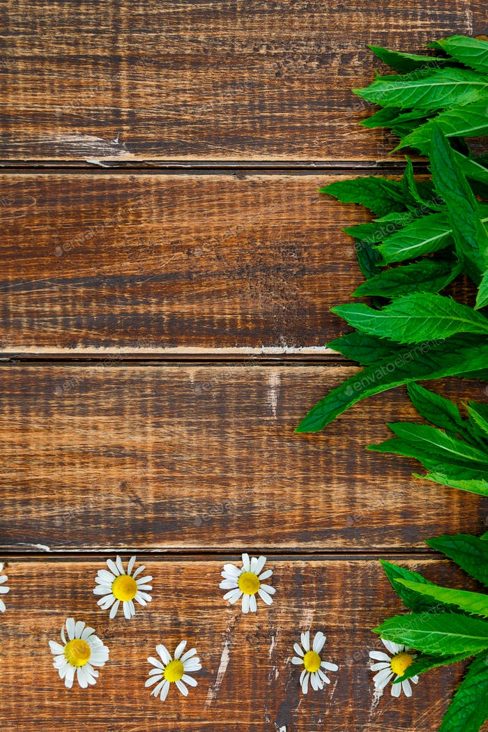 flower of chamomile and fresh mint on wooden background. Frame, copy space. Top view.