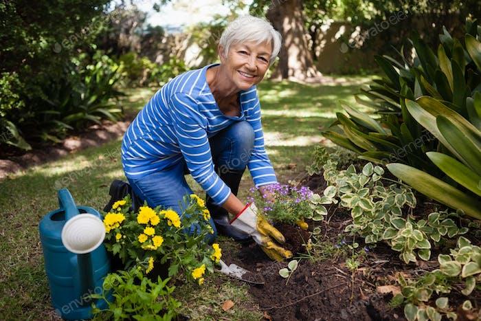 Porträt der lächelnden Seniorin kniend beim Pflanzen von Blumen