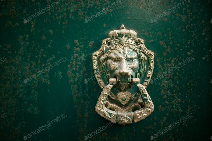 Lion door knock