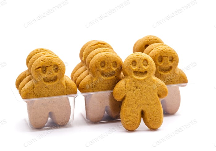 Gingerbread in packing