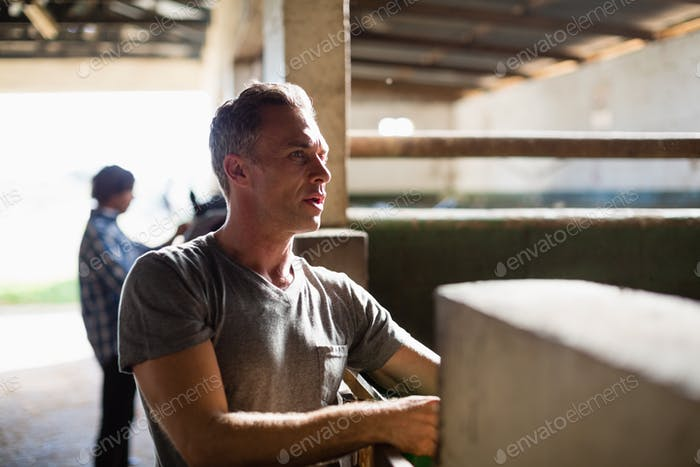 Man working in the stable