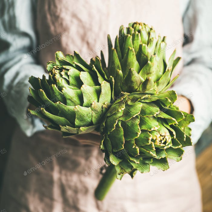Female farmer in apron holding fresh artichokes, square crop