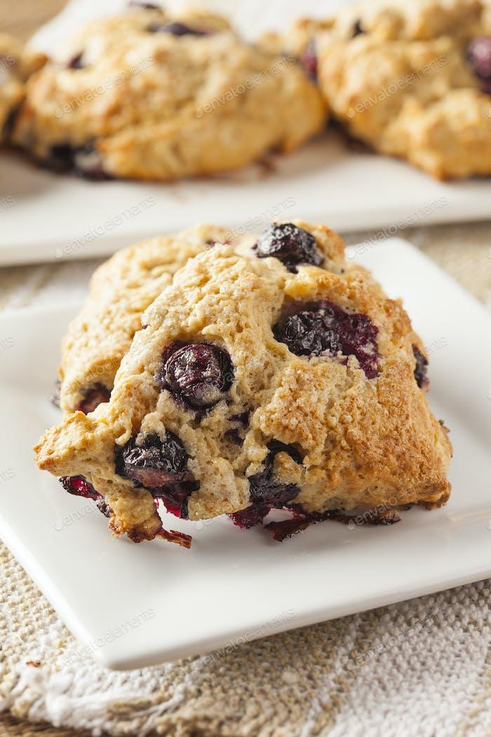 Fresh Homemade Blueberry Breakfast Scones