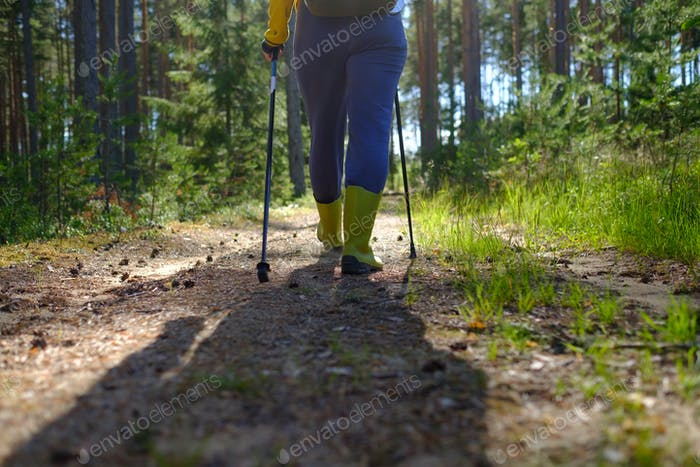 Legs and nordic walking poles in summer nature.