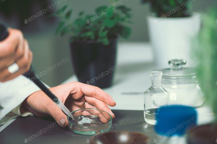 Homöopathie. Herstellung von homöopathischen Mitteln