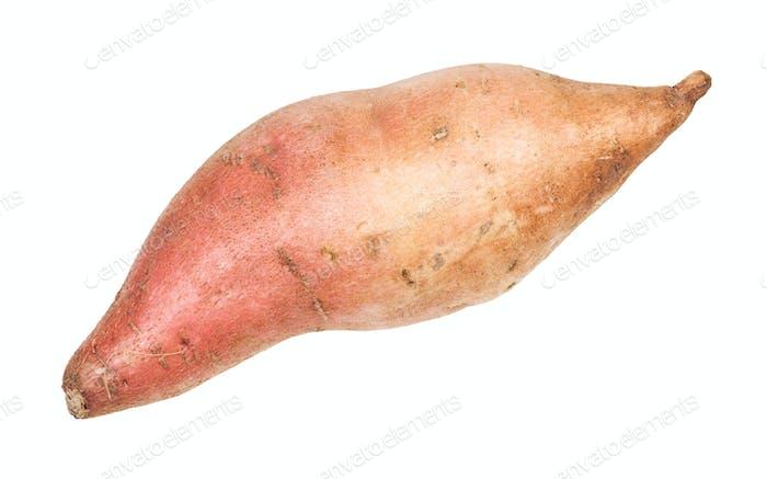 Knolle von Süßkartoffel (batata) isoliert