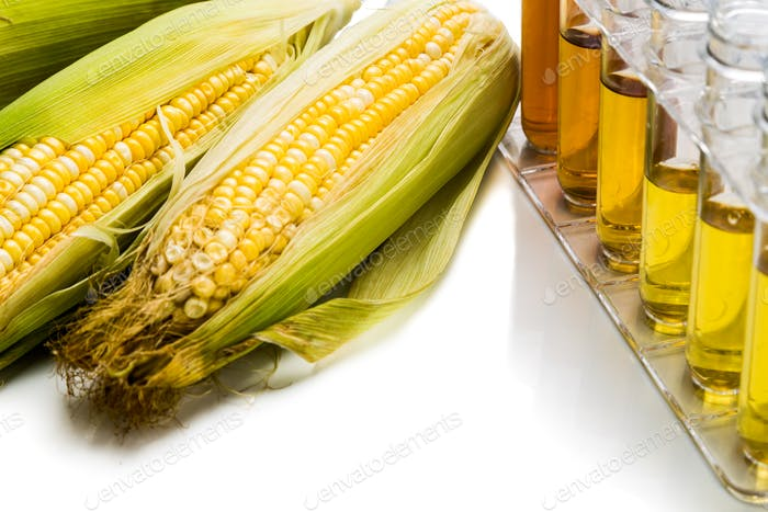 Corn generated ethanol biofuel with test tubes on white backgrou