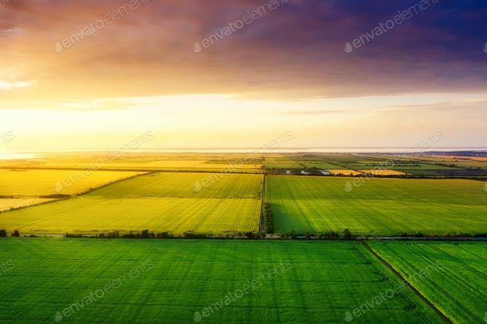 Field and sky during sundown. Landscape from air