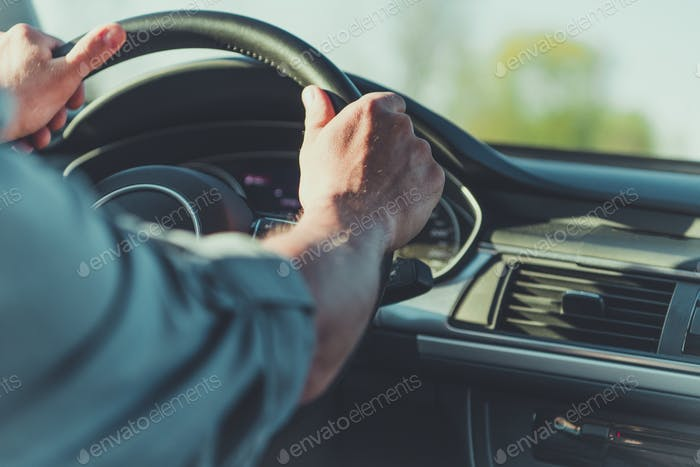 Men Behind the Wheel