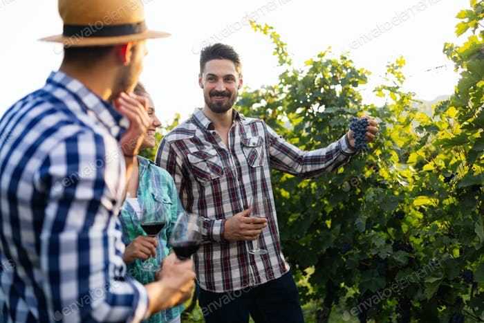 Portrait of happy people spending time in vineyard