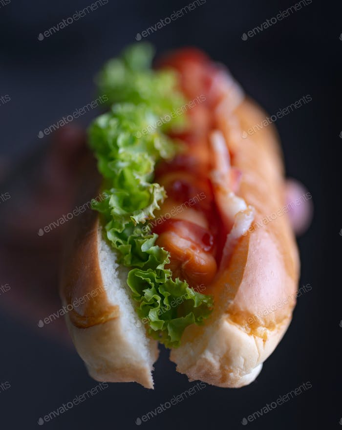 Hand of woman holding hot dog