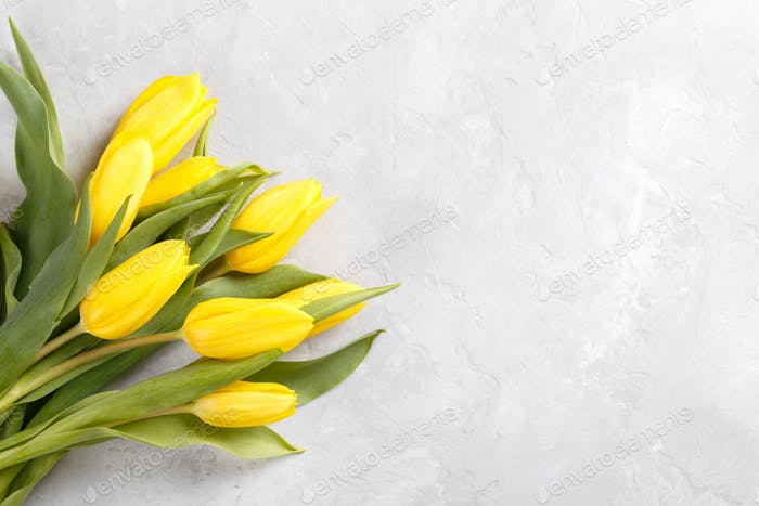 Yellow tulips on grey stone background