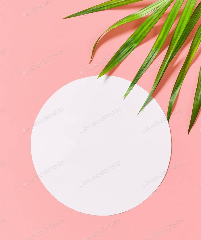 tropical leaves on pink background