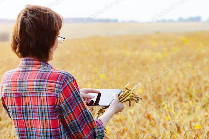 Mittelalter brünett kaukasischen weiblichen Bauernhof Arbeiter in Brille mit digitaler Tablette