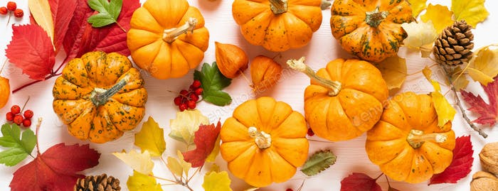 Festive fall pumpkins decor with fall leaves. Thanksgiving day,  halloween holiday, harvest concept