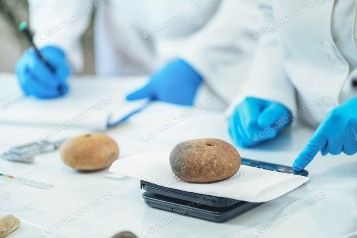 Archaeologist Measuring Prehistoric Weight on a Precision Scale in Laboratory